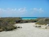 20140217-2014_02_17 Aruba-1679.jpg