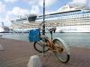 20140219-2014_02_19 Bonaire-1339.jpg