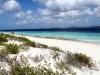 20140219-2014_02_19 Bonaire-1361.jpg