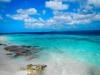 20140219-2014_02_19 Bonaire-2119.jpg
