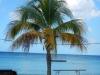 20140218-2014_02_18 Curacao-1742.jpg