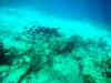 20140218-2014_02_18 Curacao-1786.jpg
