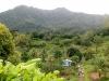 20140222-2014_02_22 Grenada-2958.jpg