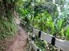 20140222-2014_02_22 Grenada-3000.jpg