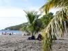 20140226-2014_02_26 Guadeloupe-1927.jpg