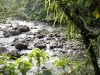 20140226-2014_02_26 Guadeloupe-1945.jpg