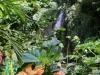 20140224-2014_02_24 St_ Lucia-3470.jpg