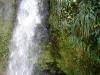 20140224-2014_02_24 St_ Lucia-3473.jpg
