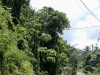20140224-2014_02_24 St_ Lucia-3515.jpg