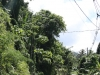 St_Lucia_2014_25